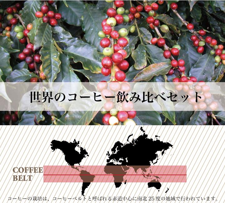 世界のコーヒーを飲み比べ